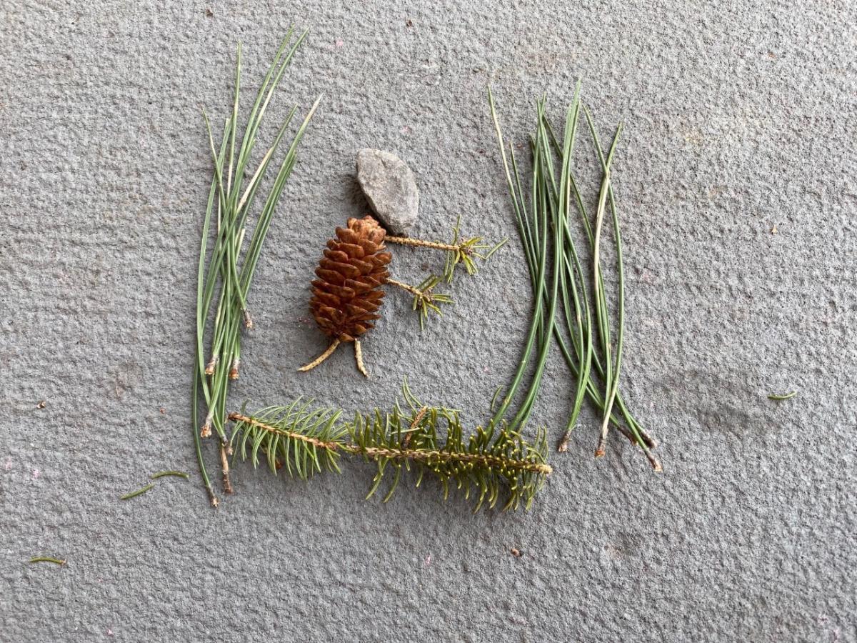caveman nature craft