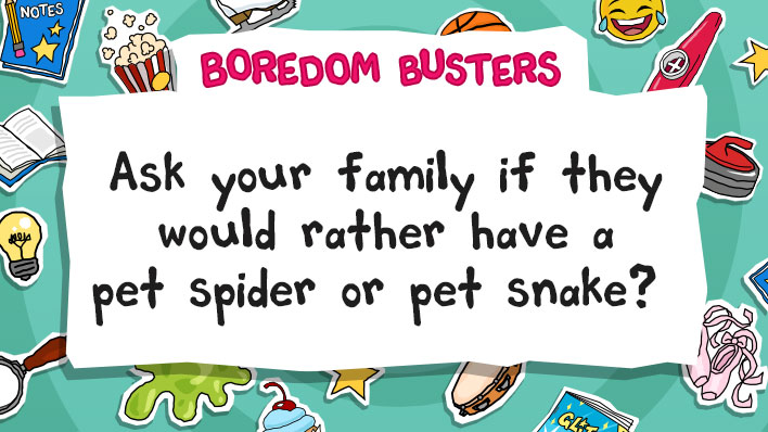 Ask your family if they would rather have a pet spider or pet snake