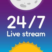 24/7 Live Stream