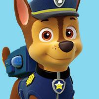 Paw Patrol - Kindergarten
