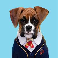 Pup Academy - Gr 1-3 Health